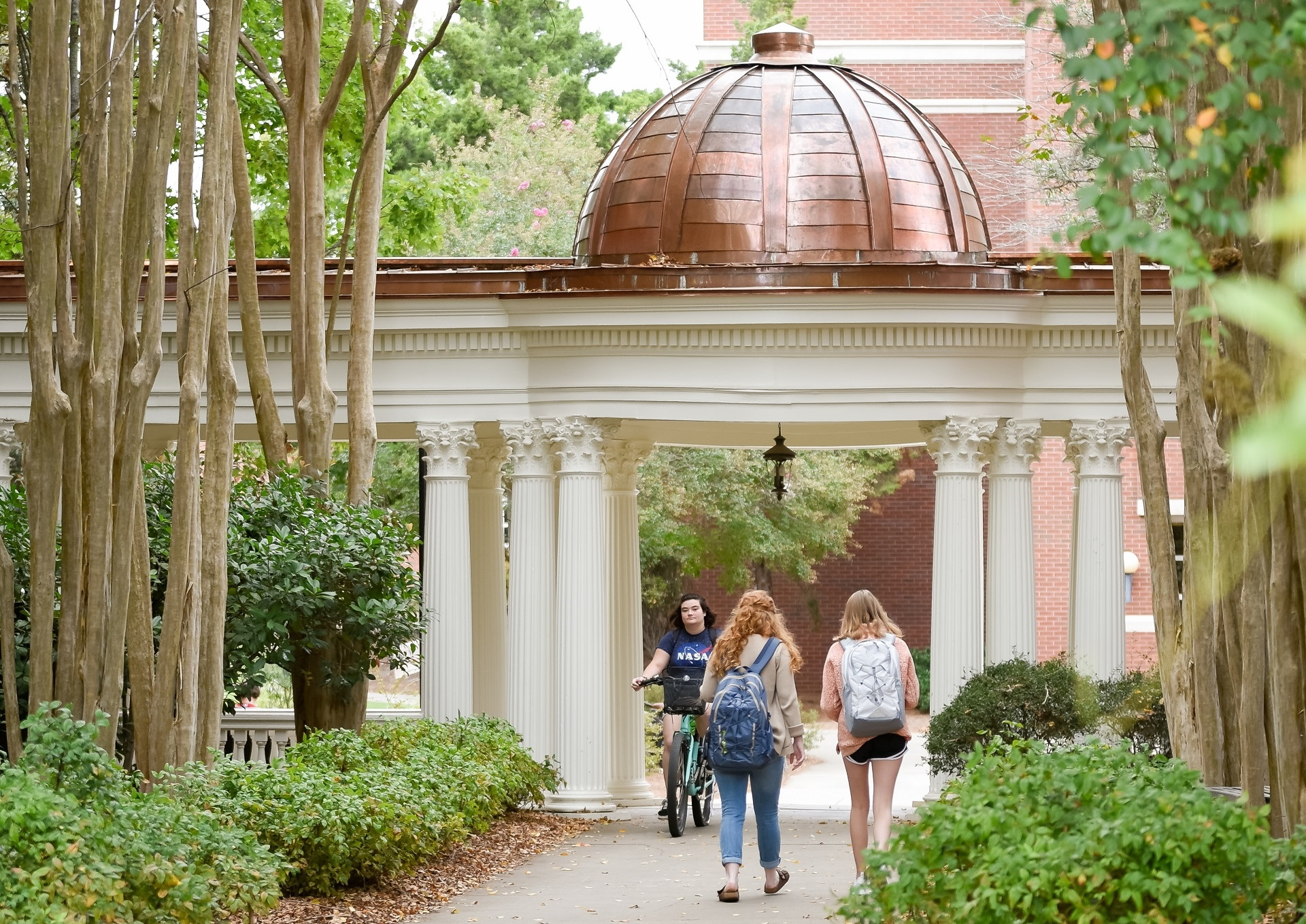 Students walking through tree lined campus
